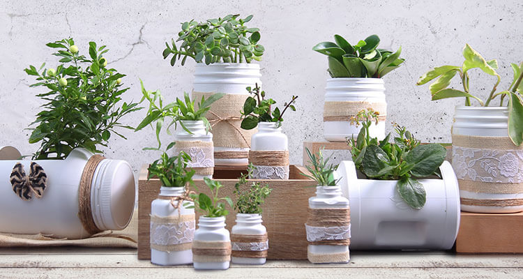 Easy Ways to Reuse Your Amway Containers
